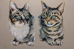 Two Pussy Cats