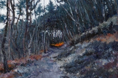 Last light Hankley Common -  8 x 6 inches     Cost  £ 120